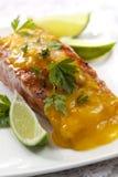 Atlantic Salmon Royalty Free Stock Image