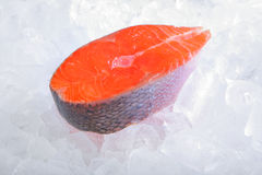 Atlantic salmon cutlet on ice Stock Photo
