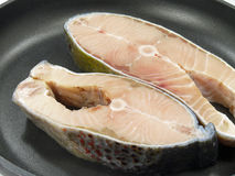 Atlantic salmon salar Stock Photo