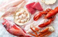 Atlantic Seafood on Ice. A selection of Atlantic Ocean seafood on ice stock photos