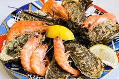 Atlantic seafood plate in local fish restaurant. Travel to France - atlantic seafood plate with prawns and oysters in local fish restaurant in Treguier town in Royalty Free Stock Image