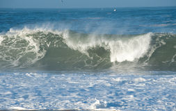 Atlantic waves in Nazare Royalty Free Stock Photo