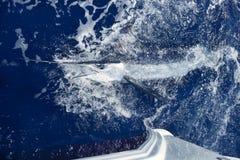 Atlantic white marlin big game sport fishing. Over blue ocean saltwater Royalty Free Stock Image