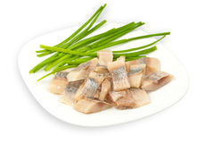 Atlantichnaya herring fillets salt Stock Photography