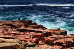 Atlantik-Küste Maine Lizenzfreie Stockfotos