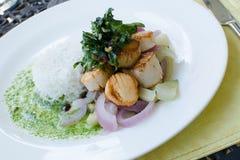 Atlantik-Kamm-Muscheln mit Reis stockbild