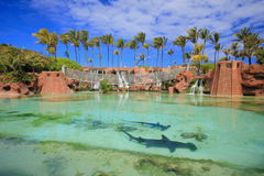 Atlantis in Bahamas Stock Photos