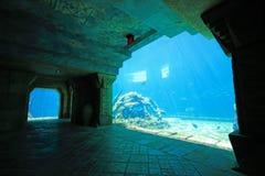 atlantis bahamas Arkivfoton