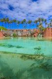 atlantis bahamas Royaltyfria Bilder