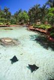 Atlantis en Bahamas Imagenes de archivo