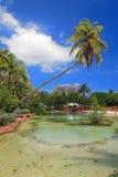 Atlantis Hotel in Bahamas4 Stock Images