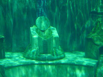 Atlantis King's Chair. Underwater picture of an Atlantis king's chair Stock Photography