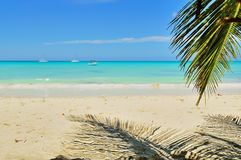 Atlantisch strand, palm, zand, schepen in de oceaan, tegen de blauwe hemel en de wolken Royalty-vrije Stock Afbeelding