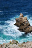 Atlantische Küste Stockbild