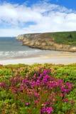 Atlantische kust in Bretagne Royalty-vrije Stock Foto