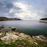 Atlantische kust in Newfoundland stock foto's