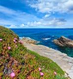 Atlantische tot bloei komende kustlijn, Spanje stock afbeelding