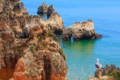 Atlantisk stenig kustlinje Algarve, Portugal för sommar arkivfoton