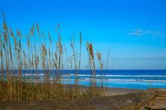 Atlantisk strand i Jacksonville av florida USA Arkivbilder