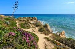 Atlantycki kwitnie brzegowy widok Algarve, Portugalia Fotografia Stock