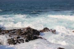 Atlantycki ocean, Tenerife wyspa - kanarek, Hiszpania Zdjęcia Royalty Free