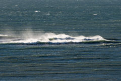 Atlantyckie ocean fala w Patagonia Fotografia Royalty Free