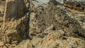 Atlantyckiego oceanu wybrzeża granitowi głazy i denne falezy, Portugalia zdjęcie wideo