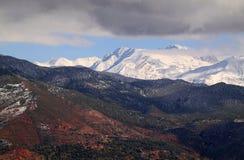 Atlas Mountains Marrakesh - Ouarzazate. Snow covered Atlas Mountains and pine forest  between Marrakesh and Ouarzazate Stock Photos