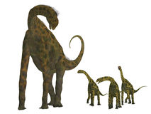 Atlasaurus Dinosaur with Babies Royalty Free Stock Photo