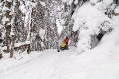 Atleet op een sneeuwscooter stock afbeeldingen