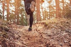 Atleta bieg wzdłuż lasowego śladu Aktywny sposób życia, tylni widok obrazy royalty free
