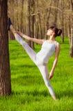 Atleta de la chica joven que hace estirar en un árbol en la hierba Foto de archivo