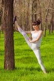 Atleta de la chica joven que hace estirar en un árbol en la hierba Fotos de archivo