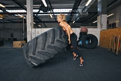 Atleta de sexo femenino apto que mueve de un tirón un neumático enorme Imagen de archivo