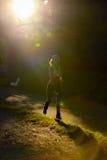 Atleta del corridore della donna in parco Allenamento di alba Fotografie Stock