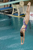 Atleta durante i campionati di immersione subacquea Immagini Stock