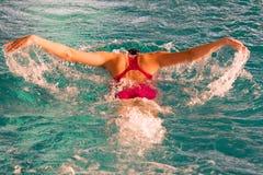 Atleta en una piscina que nada la técnica de la natación de la mariposa Imagen de archivo