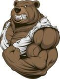 Atleta feroz do urso Foto de Stock