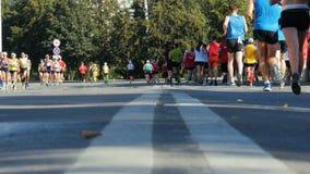 Atleta maratonu biegacze biegają przez ulic miasto w kierunku each inny zdjęcie wideo