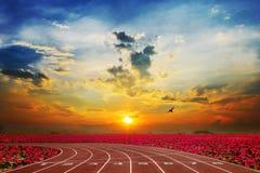 Atleta Track o pista corrente con loto rosso piacevole Fotografia Stock