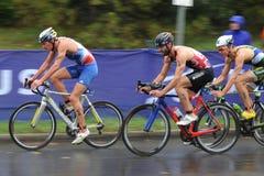atletas Fotografia de Stock