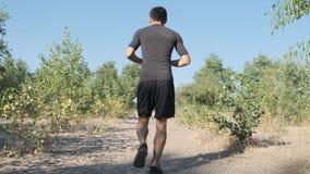 Atletenjogging in het park stock videobeelden