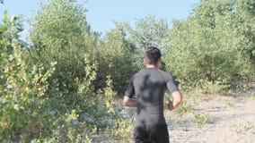 Atletenjogging in het park stock footage