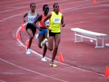 Atletic em Belgrade5 foto de stock