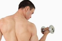 Atletic male doing weight lifting Stock Photography
