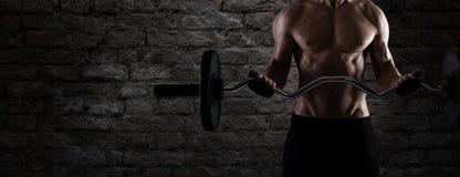 Atletische mens opleidingsbicepsen bij de gymnastiek aan gebruik als banner royalty-vrije stock foto