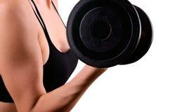 Atletische vrouw die oefeningen met domoren voor de bicepsen doen Stock Foto's