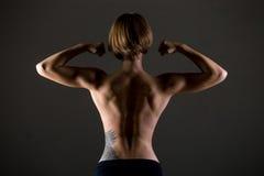 Atletische vrouwenrug Stock Fotografie