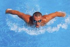 Atletische zwemmer Royalty-vrije Stock Afbeeldingen