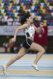 atletyzm Obrazy Stock